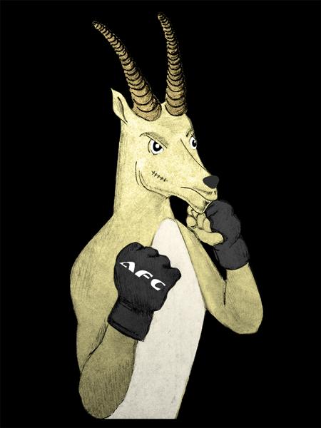 afc-gazelle-2